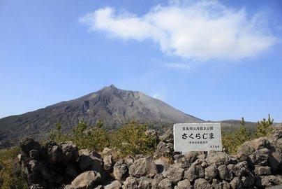 arimura7.jpg