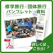 修学旅行・団体旅行 パンフレット・資料