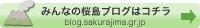 みんなの桜島ブログはコチラ
