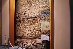 桜島の噴出物